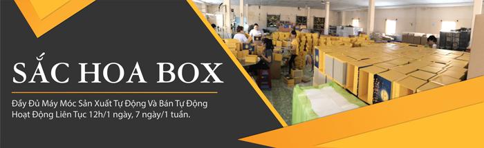 Công ty sản xuất hộp giấy Sắc Hoa Box có trang thiết bị hiện đại